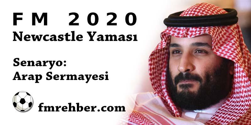 fm 2020 newcastle